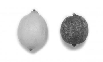 medium_6-7_citrons.jpg