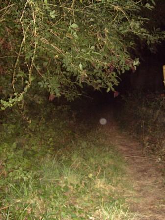 paranormal,lévitation,décorporation,mystere,au-dela,voyant